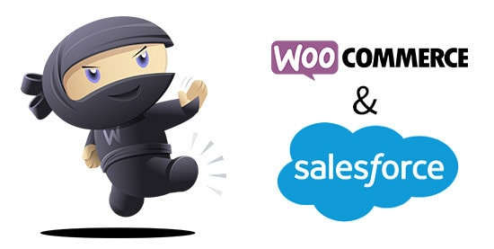 salesforce-woocommerce-shopify-integration